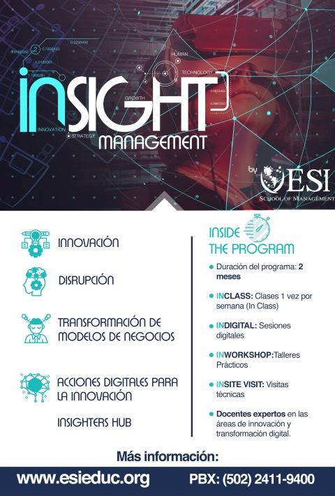 flyerinsight (002)